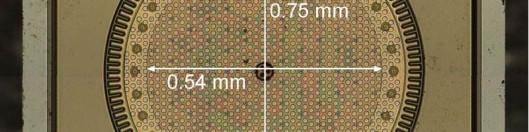 Photomicrograph of MEMS microphone